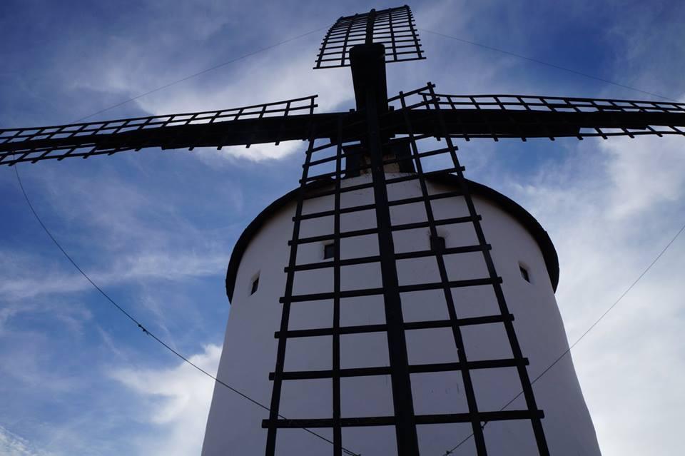 Windmills 3 - фото 11